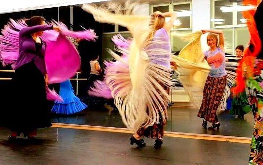 Flamencoles Den Haag